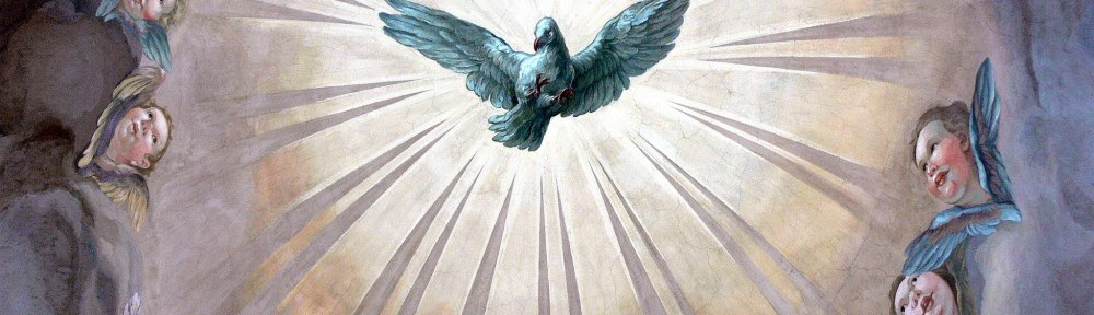 Image of Dove of Holy Spirit Star Bird seen by Tara Greene in Isla Mujeres February 22, 1979