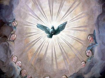 Image describes Star Bird seen by Tara Greene in Isla Mujeres February 22, 1979