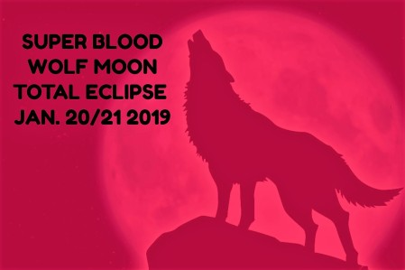 super Blood Wolf Leo Lunar Eclipse astrology Tara Greene