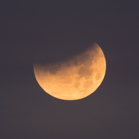 Stephen Rahn from Macon, GA, USA [CC0] https://commons.wikimedia.org/wiki/File:Partial_Lunar_Eclipse_on_1-31-18_(26137564738).jpg