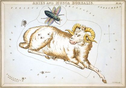 Aries constellation by Sidney Hall Urania's mirror