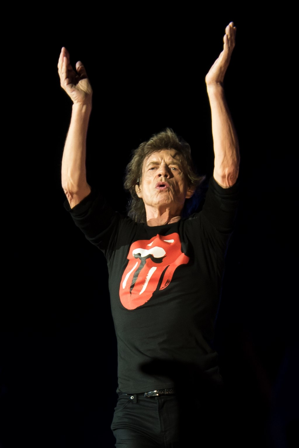 Mick Jagger The Rolling Stones Jerzy Bednarski / CC BY-SA (https://creativecommons.org/licenses/by-sa/4.0)