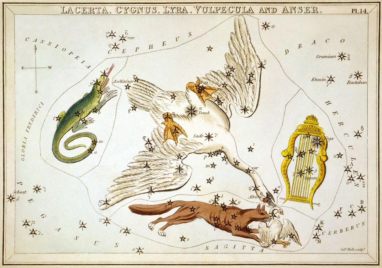 Sidney Hall Lyra Constellation wikimedia Commons, Astrology Astronomy Symbols