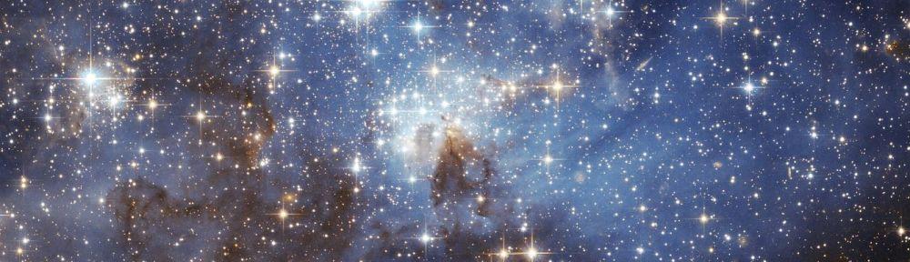 Stars in the Sky, Starseeds